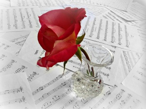 Red rose is in a clear vase over scattered music sheets, filled with notes. The water in the vase is clear.